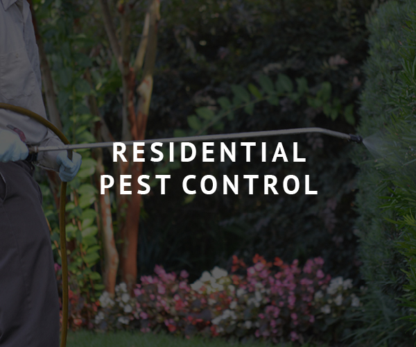 Brunson Residential Pest Control