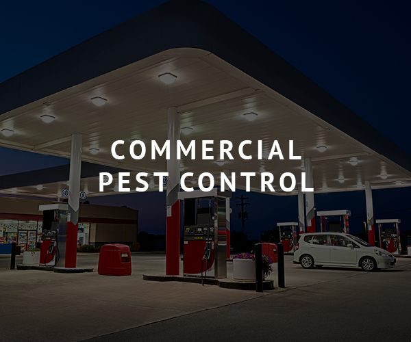 Brunson Commercial Pest Control